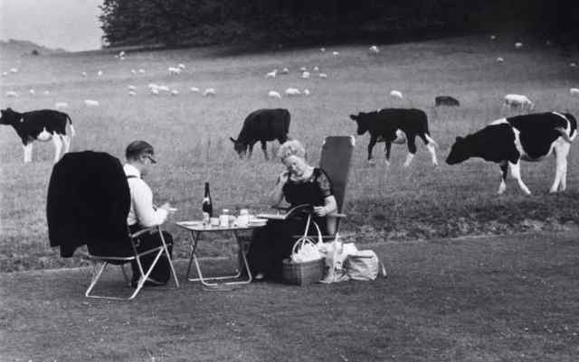 Picnic Glyndebourne - Tony Ray-Jones 1967
